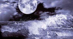 Astrology Basics 101 – Conscious Community Magazine