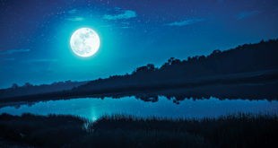 Astrology & Numerology – Conscious Community Magazine